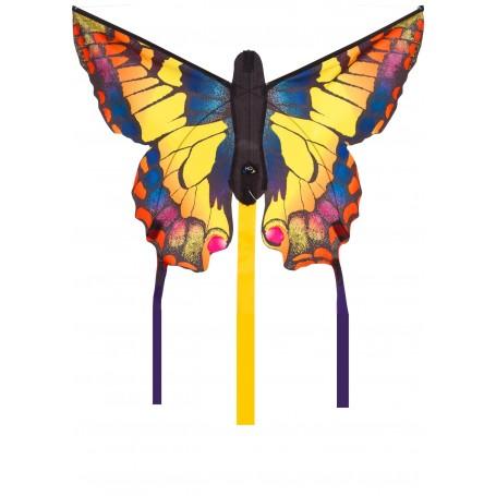 Papillon Swallowtail R