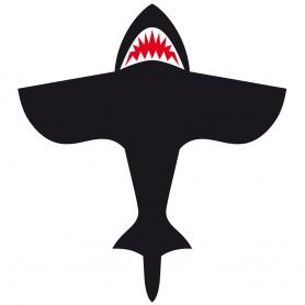 Requin (petit)